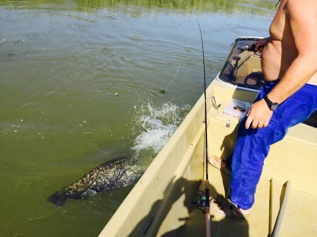 Рыбалка на иголке